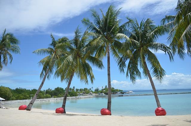 【体験談】子連れ海外旅行でセブ島に行くならホテル?コンドミニアム?